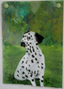 Dalmatian Dog Dotty