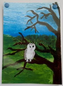 Tree Owl ACEO