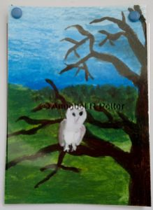 Tree Owl ACEO