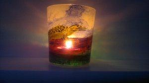 Aligator candle lit