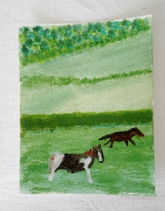 Horses & fields