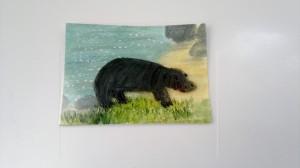 Hippopotamus w