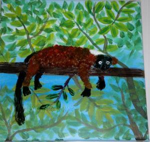 Red Lemur w