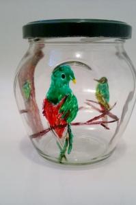Quetzal male