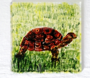 Tortoise on a Fused Glass Coaster by Annabel