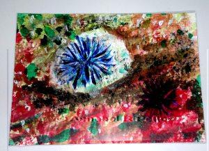 Urchin flash w