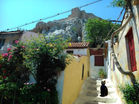 Athens side street, with one of my hand painted cats to make up for the lack of cat photos!