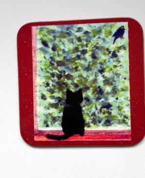 Black cat bird watching