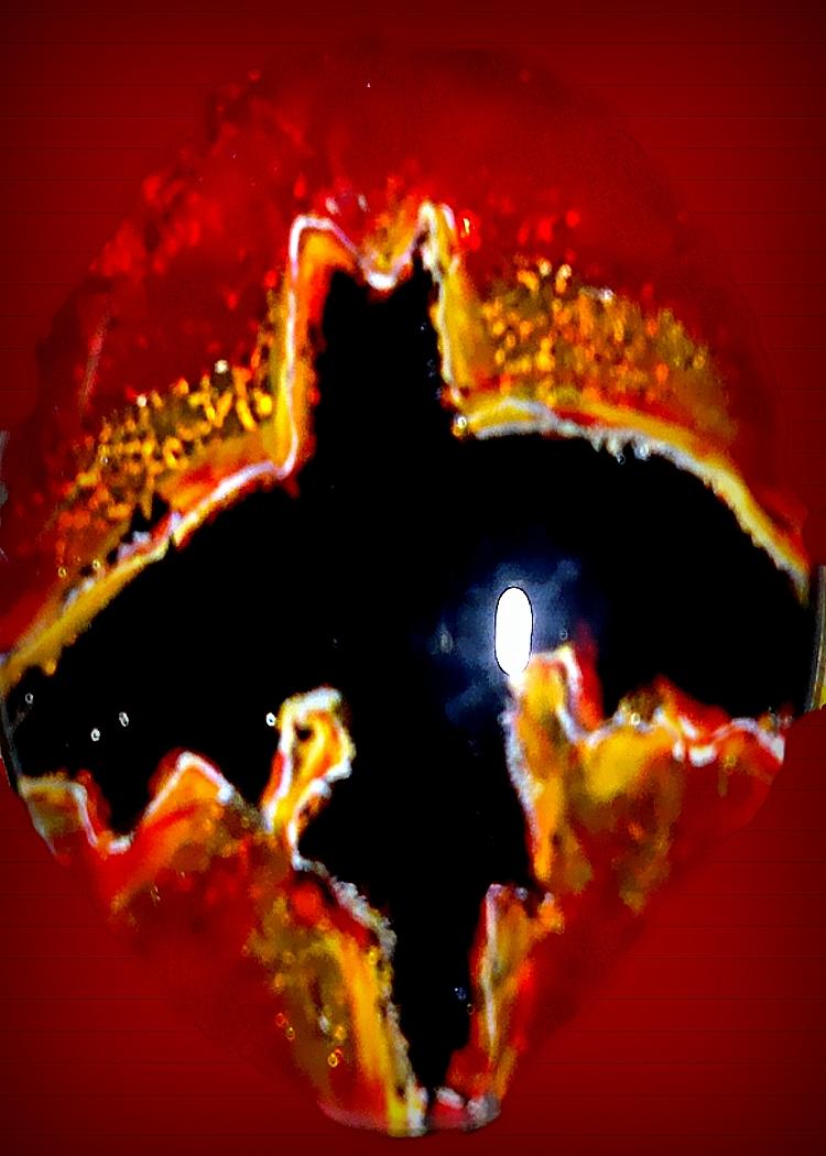 Vampire Bat ACEO